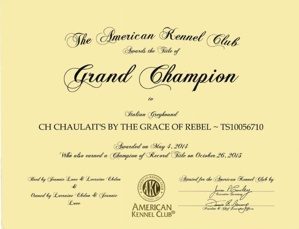Chaulait's By The Grace Of Rebel, GCHjpg_Page1, cropped