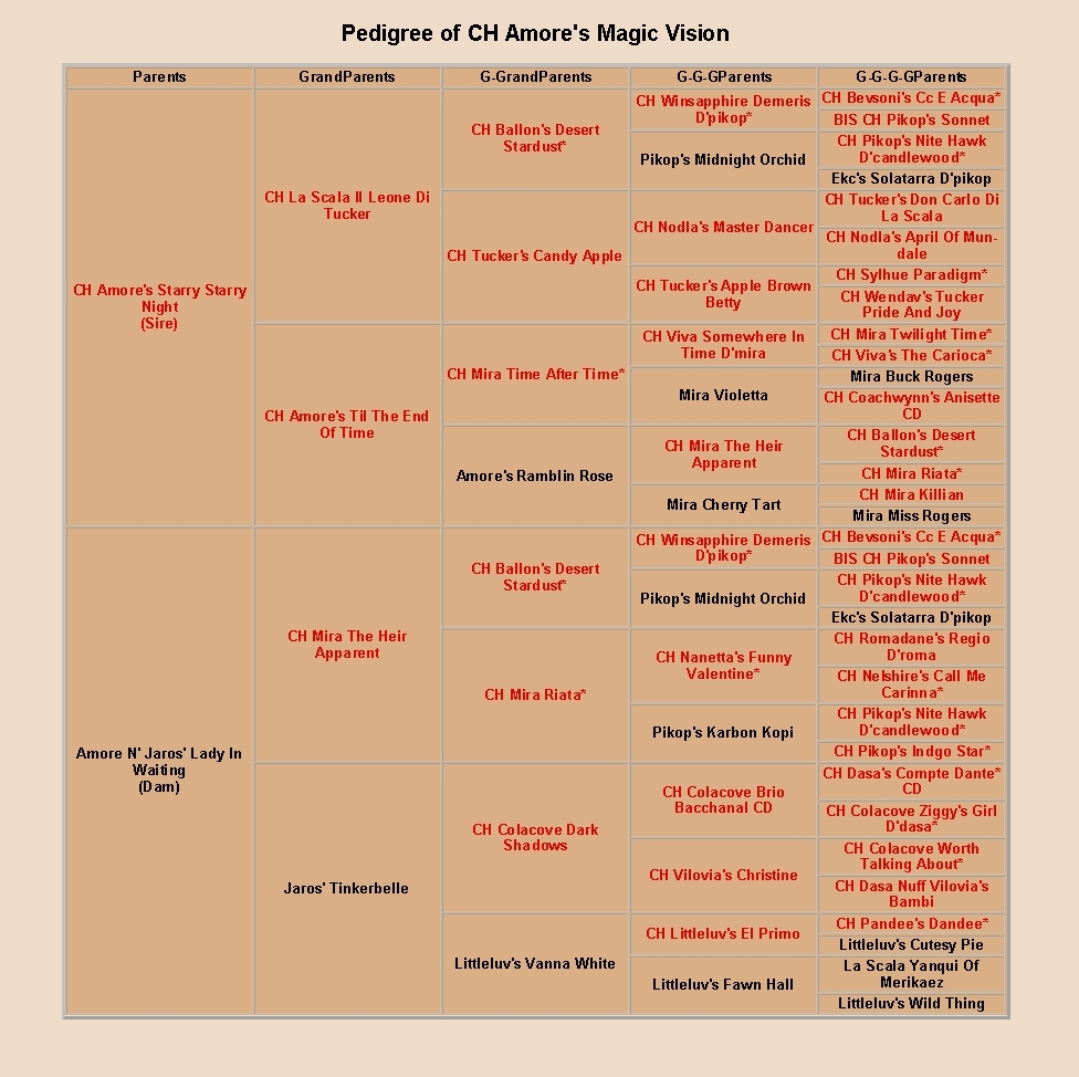 pedigree of amore's magic vision, cropped
