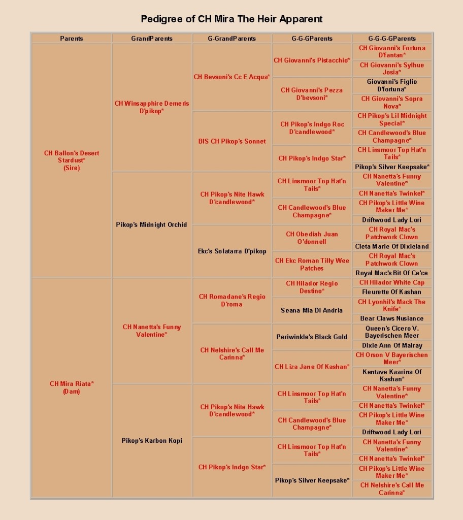 pedigree of mira the heir apparent, cropped